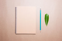 Leaf, notebook and pencil on a brown paper. View from above. Royalty Free Stock Images