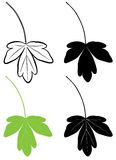 Leaf_one. The raster image of foliage as a outline Vector Illustration