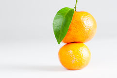 Leaf oranges Royalty Free Stock Image