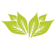 Leaf Pair Icon Vector Illustrations royalty free illustration
