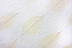 Leaf paper Stock Images