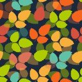 Leaf pattern Royalty Free Stock Image