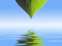 Leaf pattern background vector illustration