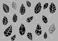 Leaf pattern in doodle style Stock Photography