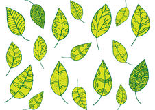 Leaf pattern in doodle style Stock Photos