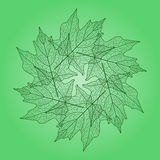 Leaf pattern illustration - green Stock Image