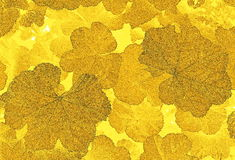 Yellow leaf Pattern Royalty Free Stock Images