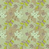 Leaf pattern. Vector illustration eps.10.  Royalty Free Stock Photo