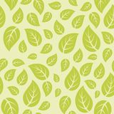 Leaf Pattern vector vector illustration