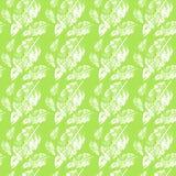 Leaf patterns design Stock Photos
