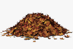 Leaf Pile stock image