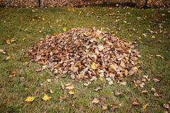 Leaf pile Stock Photos