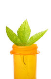 Leaf on pill bottle Stock Image