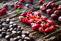 Leaf, pine nuts, dried red peppers and wild rose on wooden background close-up Royalty Free Stock Images