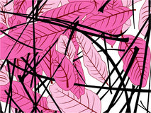 Leaf pink stock illustration