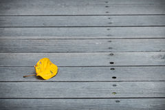 Leaf on the planks. Yellow leaf on the planks in autumn Stock Photography