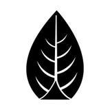 Leaf plant seasonal icon Royalty Free Stock Images