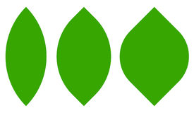 3 leaf, plant shapes isolated on white. Royalty free vector illustration Royalty Free Stock Photography