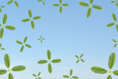 Leaf plus sign various size twist in blue sky Stock Image