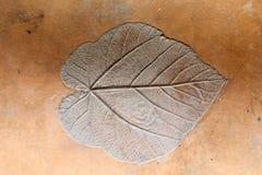 Leaf print Stock Images