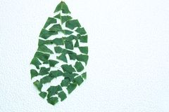Leaf puzzle Royalty Free Stock Photos