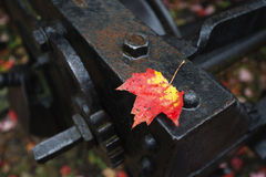Leaf and railway metal piece Stock Photo