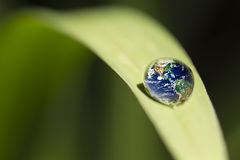 Leaf with rain droplets Recovery - earth concept Royalty Free Stock Images