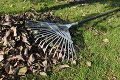 Leaf rake royalty free stock photos