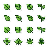 Leaf Related Vector Icons Stock Photos