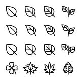 Leaf Related Vector Icons Stock Photography