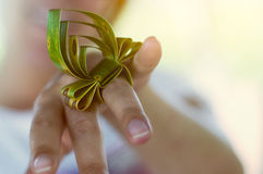 Leaf ring Royalty Free Stock Images