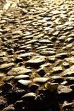 Leaf on road Stock Image