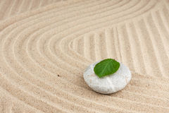 Leaf on a rock in the sand Royalty Free Stock Photos