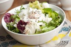 Leaf salad Stock Photography