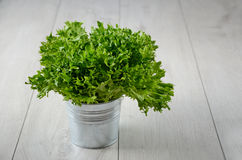 Leaf salad in a bucket. On wooden background Royalty Free Stock Images