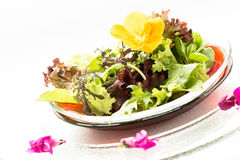 Leaf salad with yellow edible flower Royalty Free Stock Images