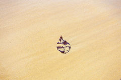 Leaf on the sand. Brown leaf on the sand. Sandy background Stock Images