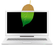 Leaf on the screen of a desktop Stock Image