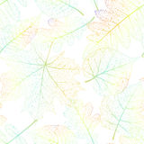 Leaf seamless abstract background. EPS 10 Royalty Free Stock Photos