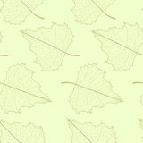 Leaf seamless background. Royalty Free Stock Photos