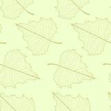 Leaf seamless background. Royalty Free Stock Photos