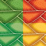 Leaf Seamless Pattern Stock Photo