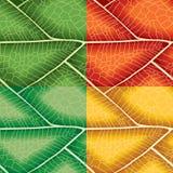 Leaf Seamless Pattern Stock Photo