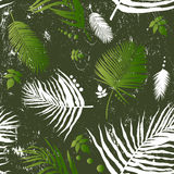 leaf seamless pattern Royalty Free Stock Image