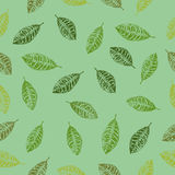 Leaf Seamless Pattern with Background Stock Photography