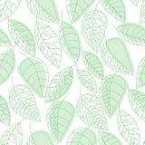 Leaf seamless pattern handdraw royalty free illustration