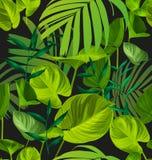 Leaf seamless pattern stock illustration