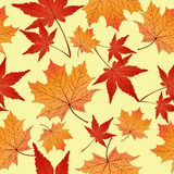 Leaf seamless pattern, vector background. Autumn yellow and red leaves on a  . For the design of wallpaper, fabric Royalty Free Stock Images
