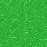 Leaf (seamless vector wallpaper) royalty free illustration