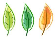 Leaf set Stock Image